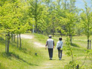 散歩している夫婦の写真