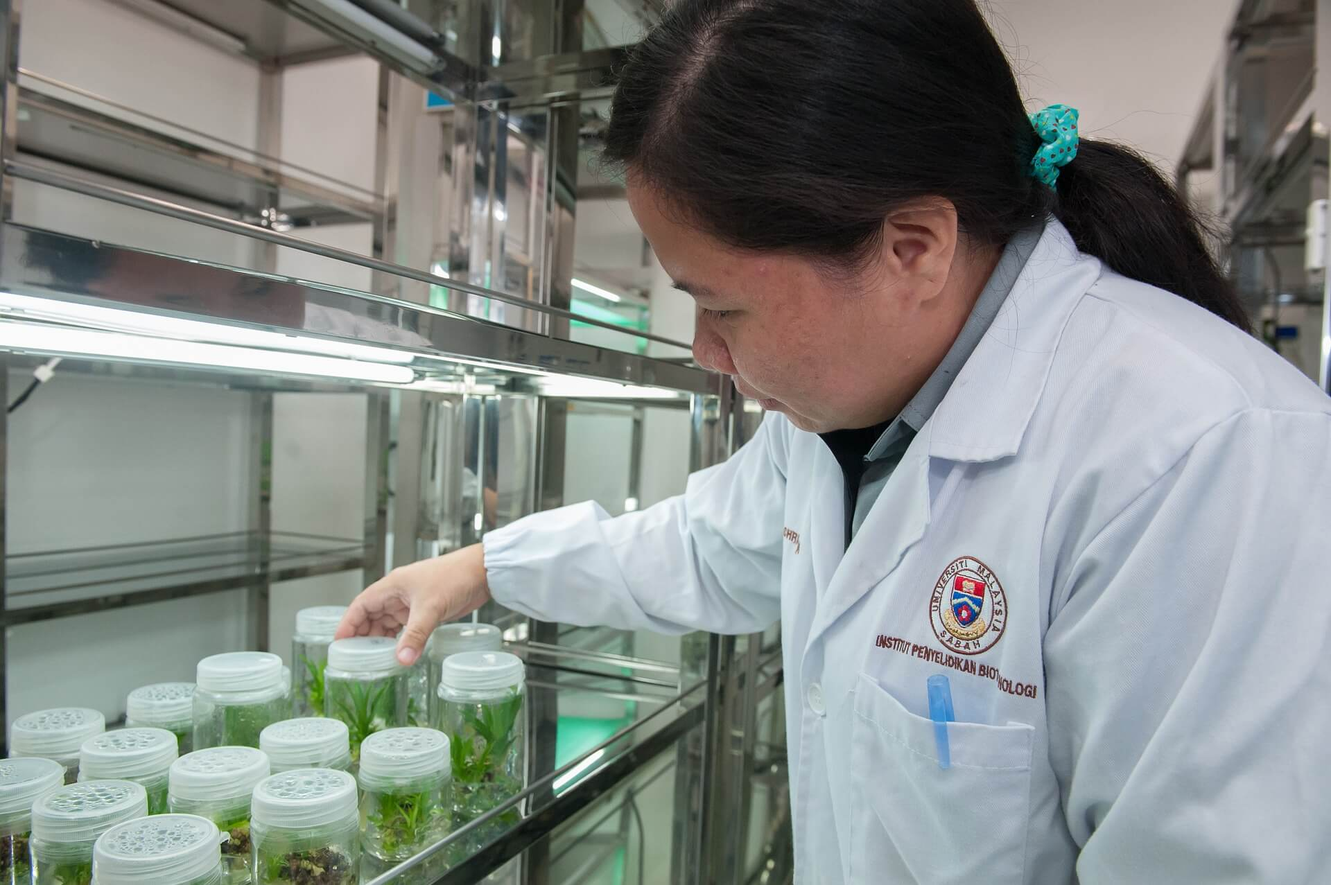 植物研究所