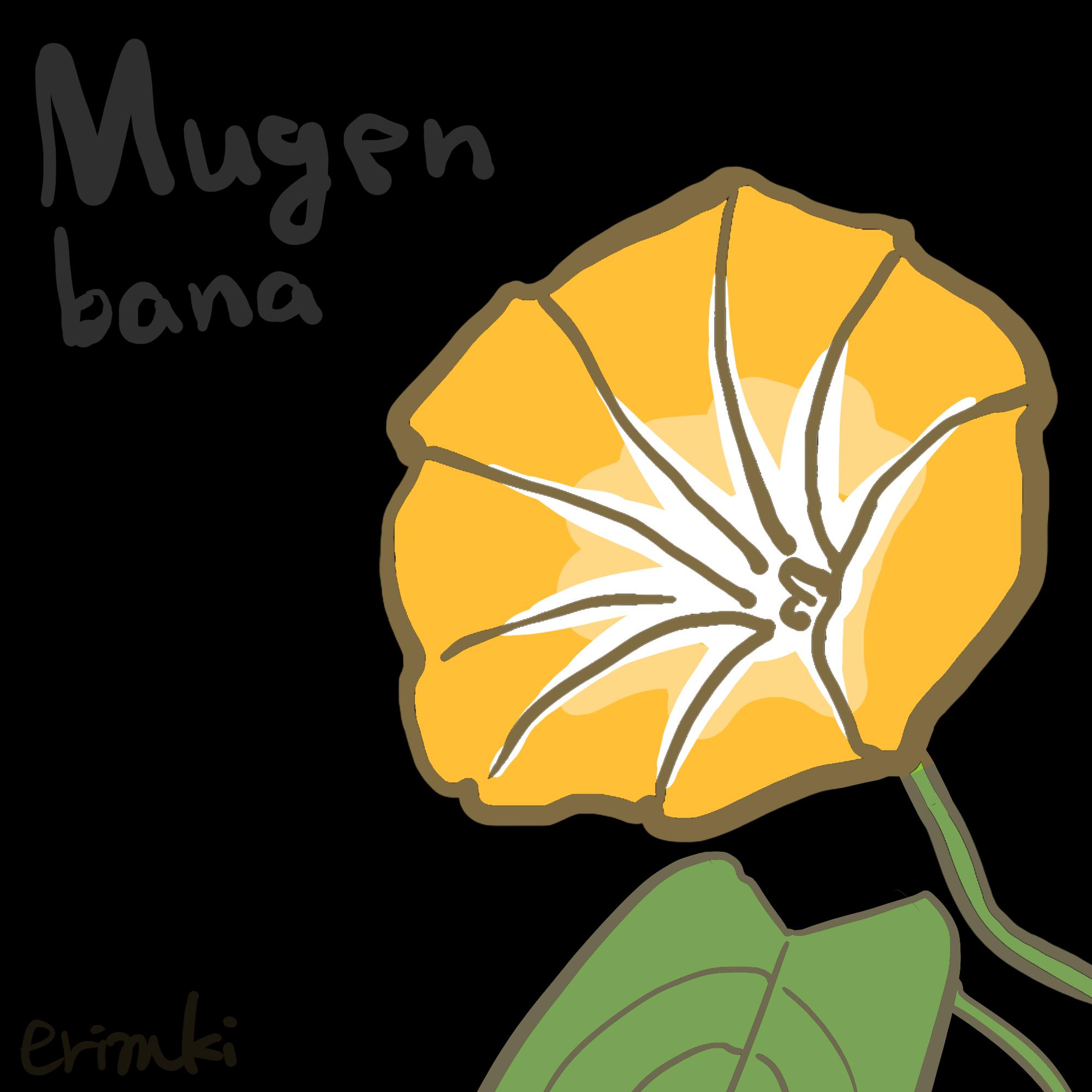 黄色い朝顔のイラスト
