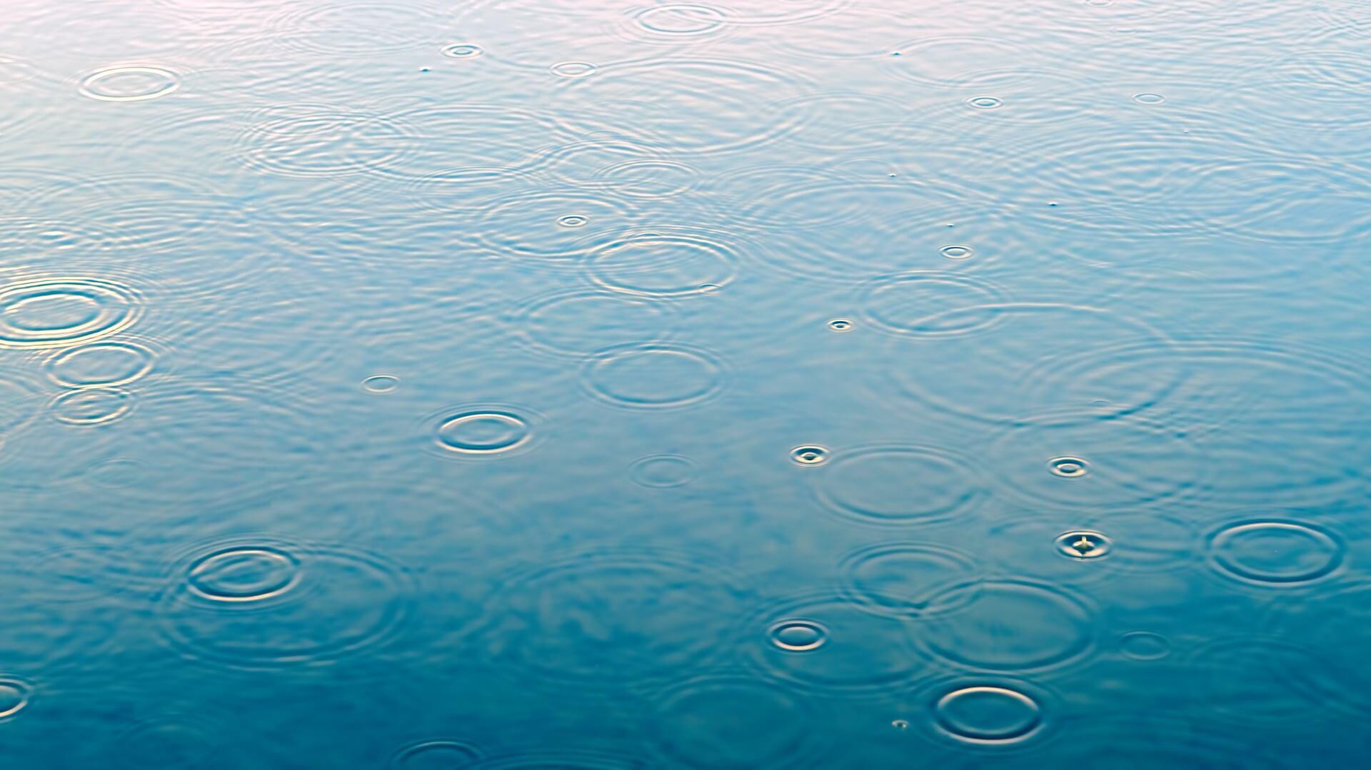 雨と雨水の写真